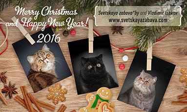 Дорогие друзья, я надеюсь, что 2015 год был хорошим для вас, и желаю всем теплого Рождества и Нового 2016 года!